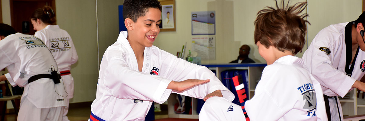 Kids Martial Arts banner image