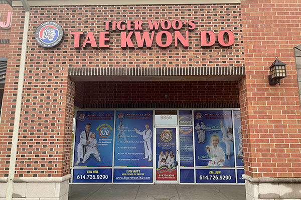 Amherst NY Taekwondo Classes